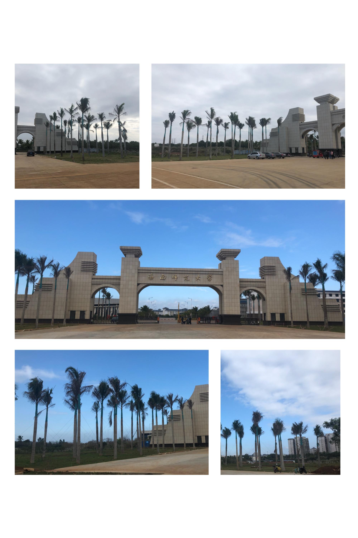海南师范大学桂林洋校区南大门内外绿化工程