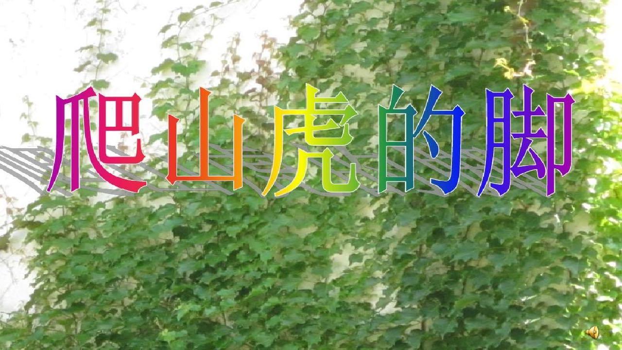 语文组教研活动