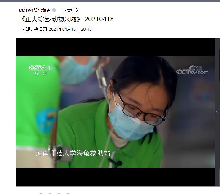 海龟救助站专题片登上央视《正大综艺·动物来啦》