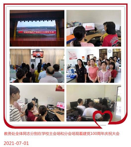 机关党委第九支部党员观看庆祝中国共产党成立100周年大会